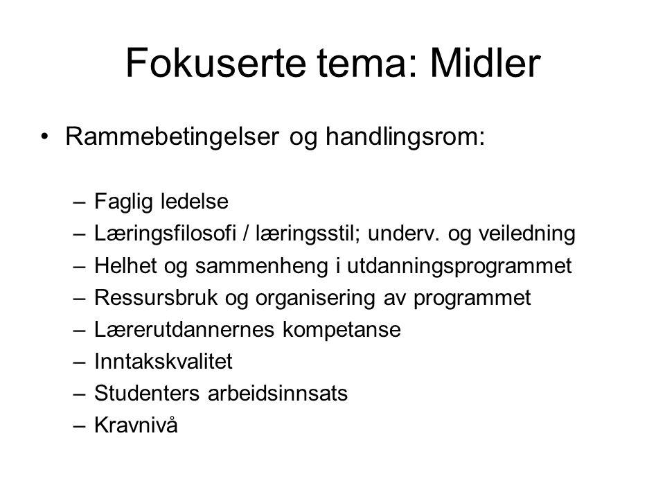 Fokuserte tema: Midler Rammebetingelser og handlingsrom: –Faglig ledelse –Læringsfilosofi / læringsstil; underv.