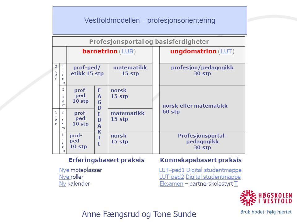 Anne Fængsrud og Tone Sunde Profesjonsportal og basisferdigheter barnetrinn (LUB)LUBungdomstrinn (LUT)LUT 2.år2.år 4.sem4.sem prof-ped/ etikk 15 stp m