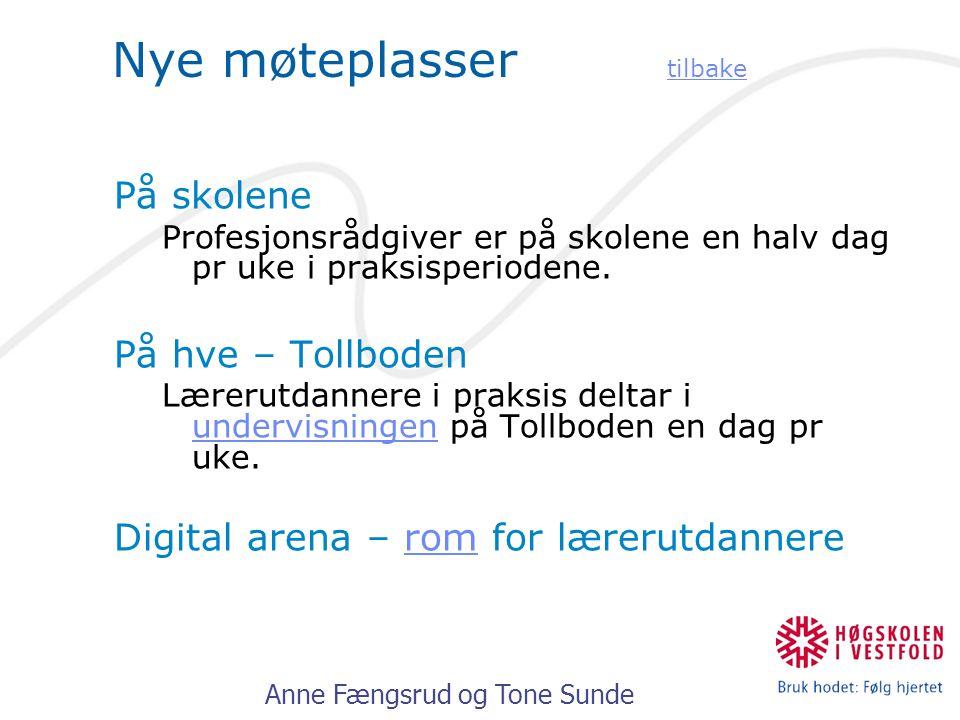 Anne Fængsrud og Tone Sunde Nye møteplasser tilbake tilbake På skolene Profesjonsrådgiver er på skolene en halv dag pr uke i praksisperiodene.
