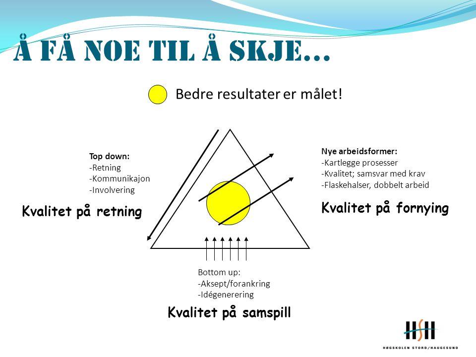 Top down: -Retning -Kommunikajon -Involvering Bottom up: -Aksept/forankring -Idégenerering Nye arbeidsformer: -Kartlegge prosesser -Kvalitet; samsvar