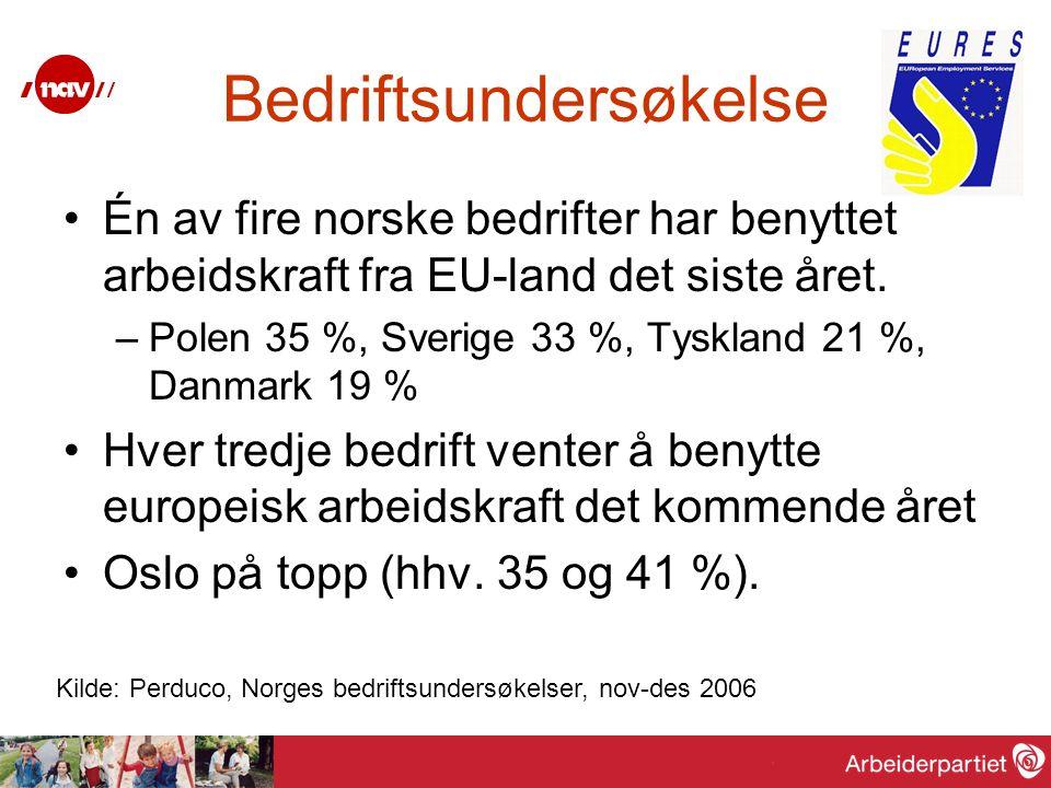 Bedriftsundersøkelse Én av fire norske bedrifter har benyttet arbeidskraft fra EU-land det siste året. –Polen 35 %, Sverige 33 %, Tyskland 21 %, Danma