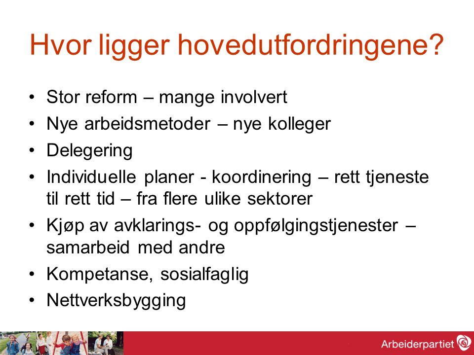Hvor ligger hovedutfordringene? Stor reform – mange involvert Nye arbeidsmetoder – nye kolleger Delegering Individuelle planer - koordinering – rett t