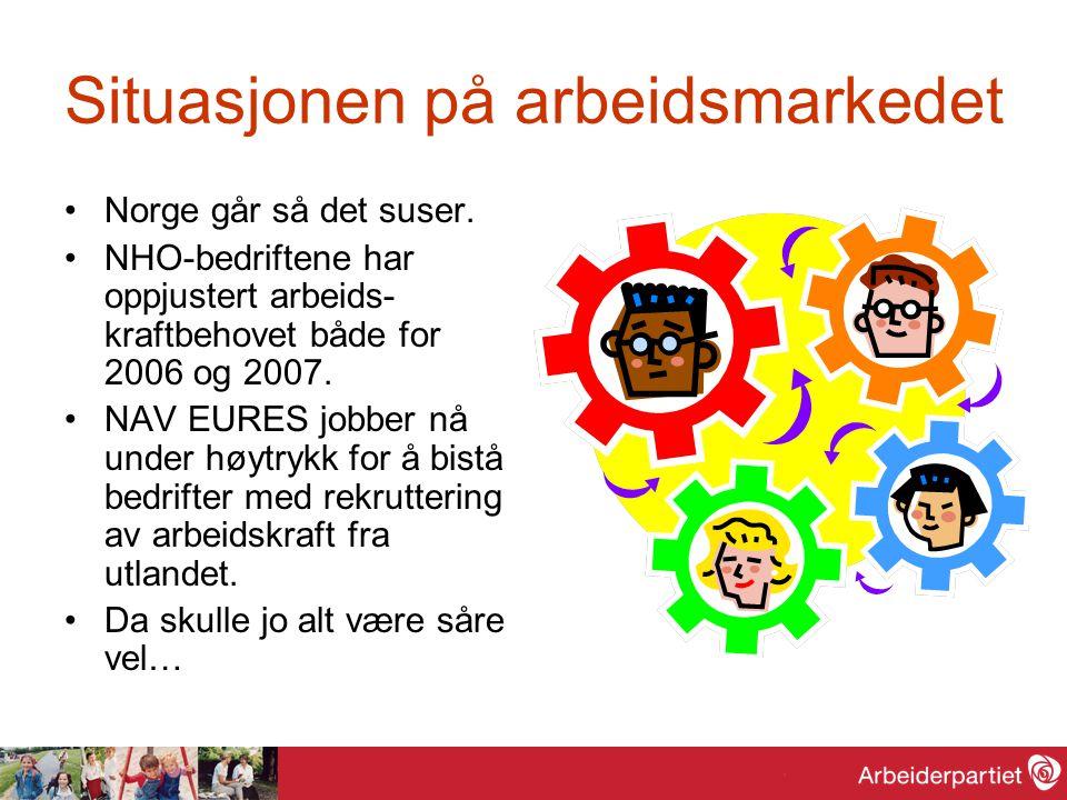 Situasjonen på arbeidsmarkedet Norge går så det suser. NHO-bedriftene har oppjustert arbeids- kraftbehovet både for 2006 og 2007. NAV EURES jobber nå