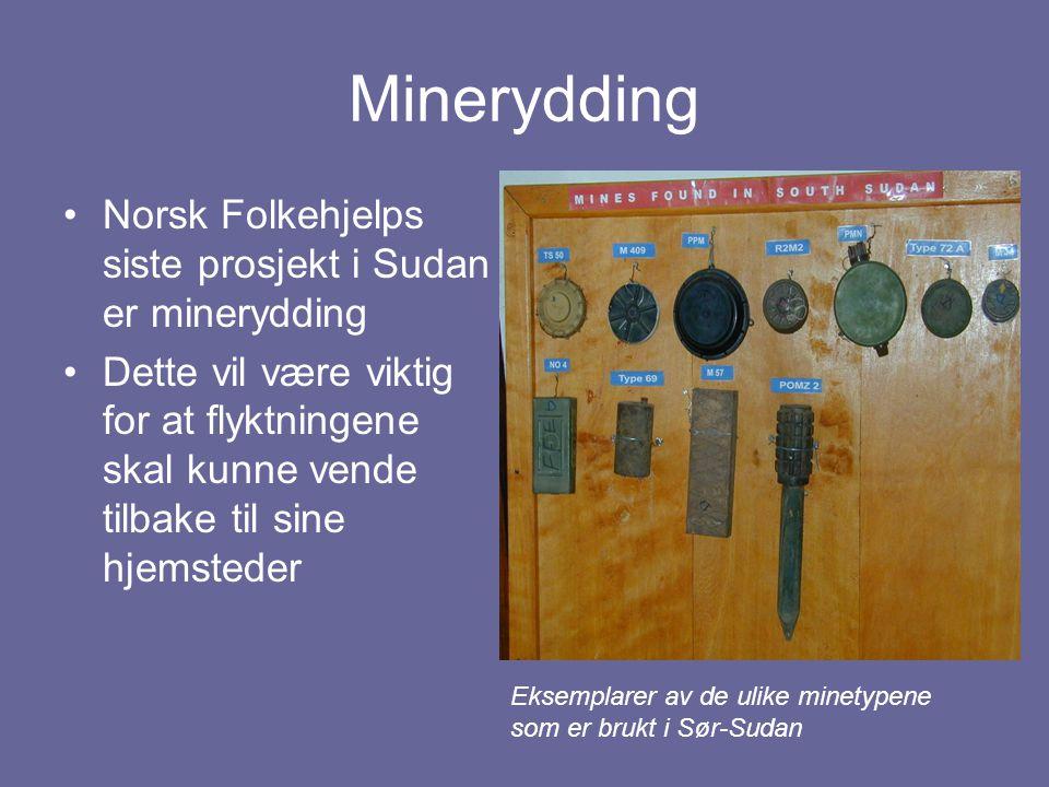 Minerydding Norsk Folkehjelps siste prosjekt i Sudan er minerydding Dette vil være viktig for at flyktningene skal kunne vende tilbake til sine hjemst