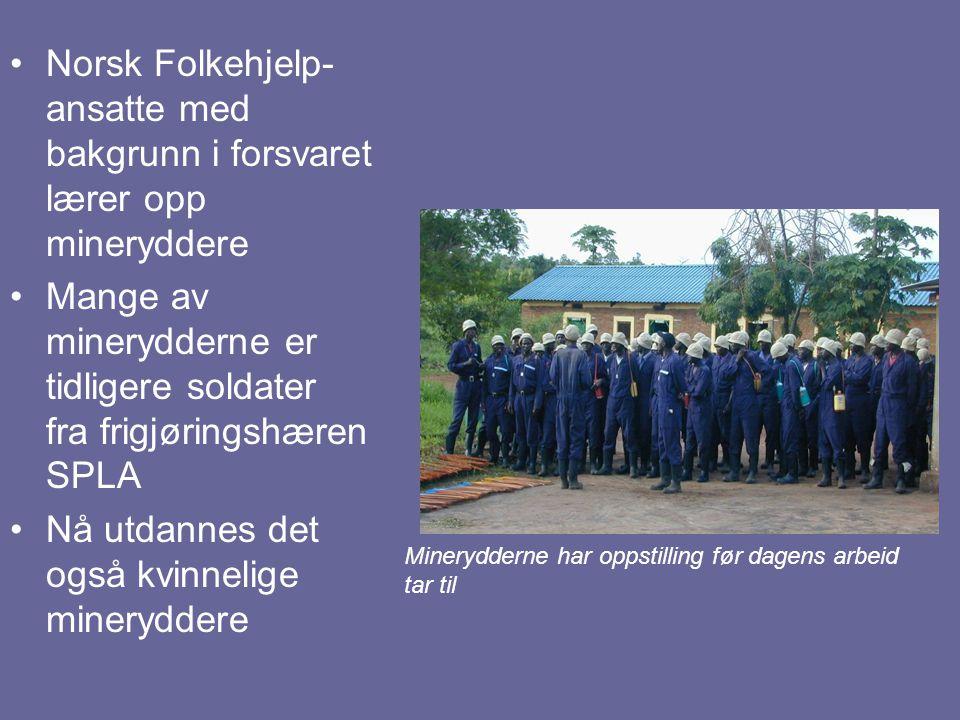 Norsk Folkehjelp- ansatte med bakgrunn i forsvaret lærer opp mineryddere Mange av minerydderne er tidligere soldater fra frigjøringshæren SPLA Nå utda