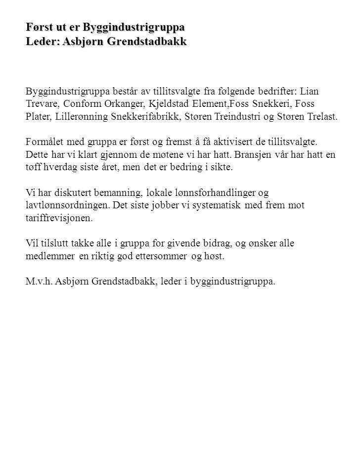 Først ut er Byggindustrigruppa Leder: Asbjørn Grendstadbakk Byggindustrigruppa består av tillitsvalgte fra følgende bedrifter: Lian Trevare, Conform O