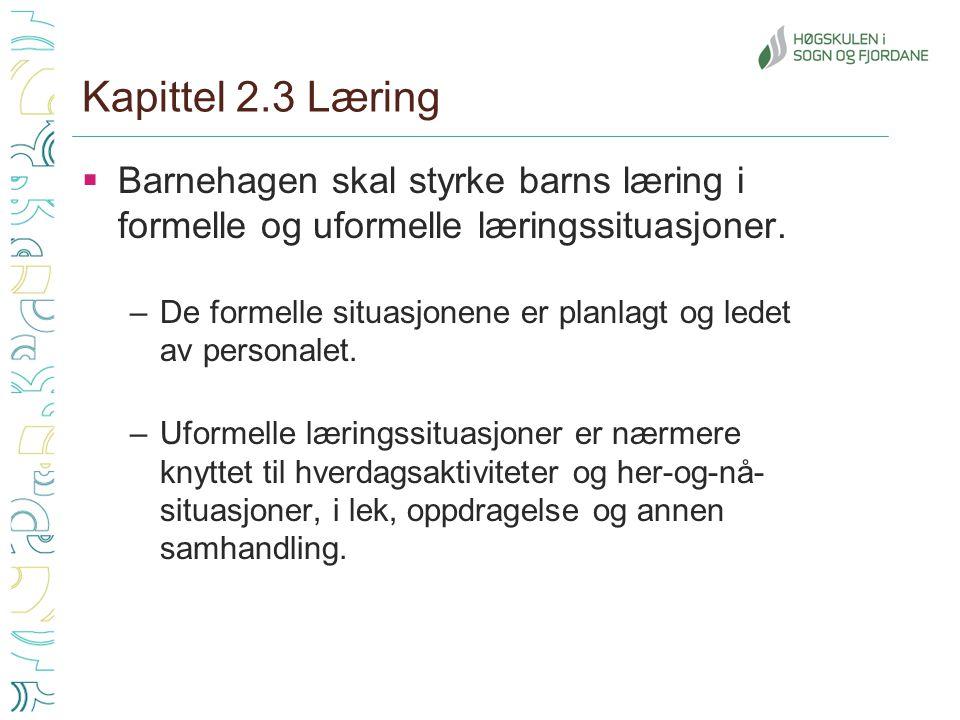 Kapittel 2.3 Læring  Barnehagen skal styrke barns læring i formelle og uformelle læringssituasjoner. –De formelle situasjonene er planlagt og ledet a
