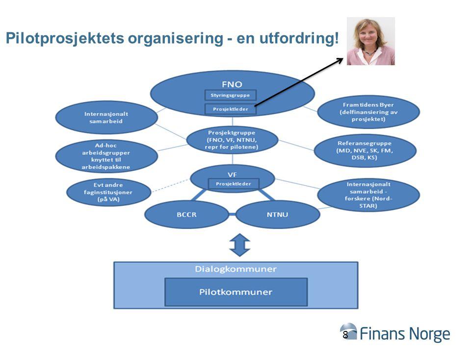 Pilotprosjektets organisering - en utfordring! 8