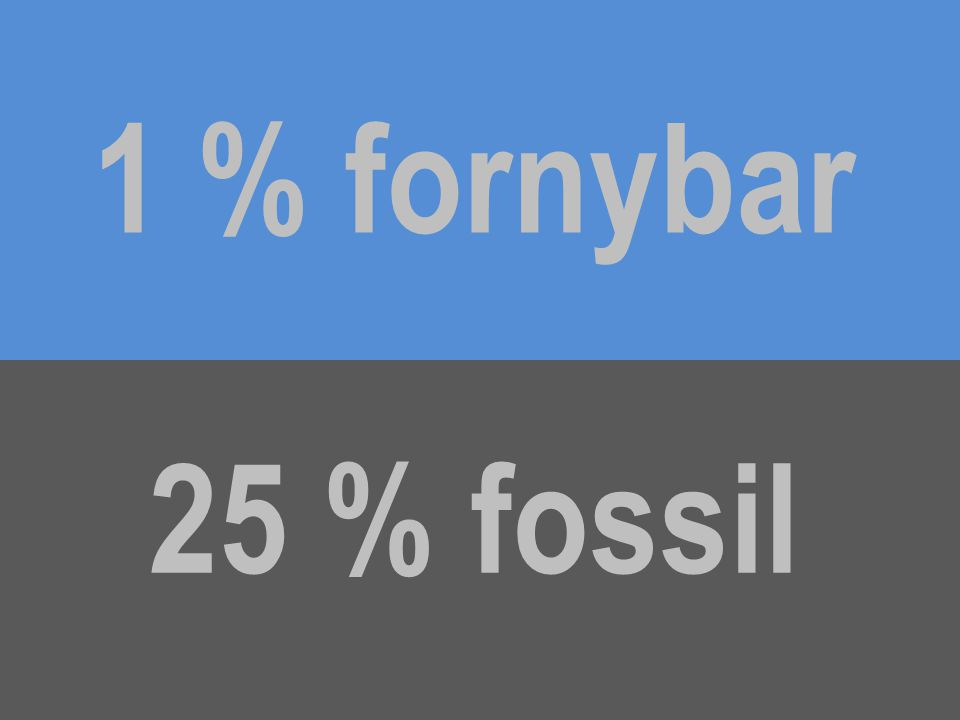 1 % fornybar 25 % fossil