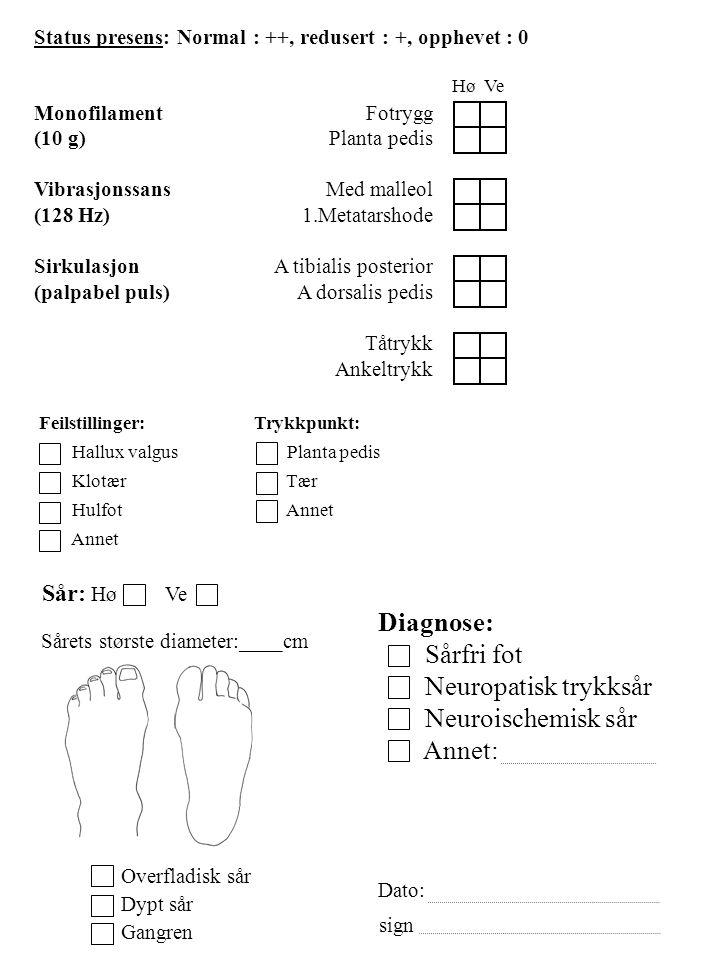 Hø Ve Sår: Hø Ve Sårets største diameter:____cm Overfladisk sår Dypt sår Gangren Diagnose: Sårfri fot Neuropatisk trykksår Neuroischemisk sår Annet: D