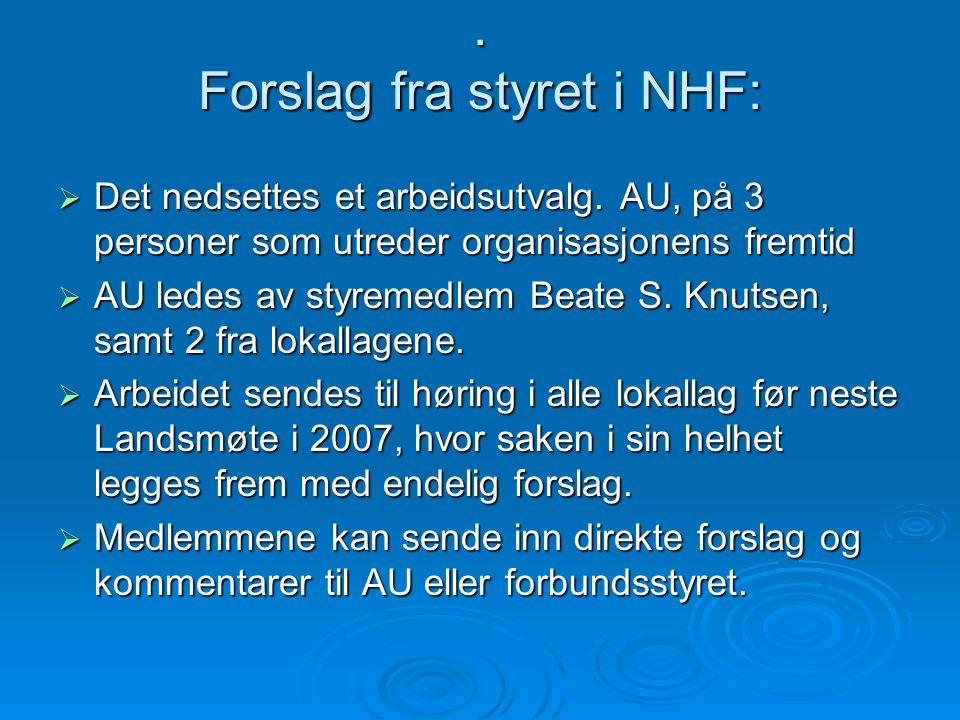 Forslag fra styret i NHF:  Det nedsettes et arbeidsutvalg.