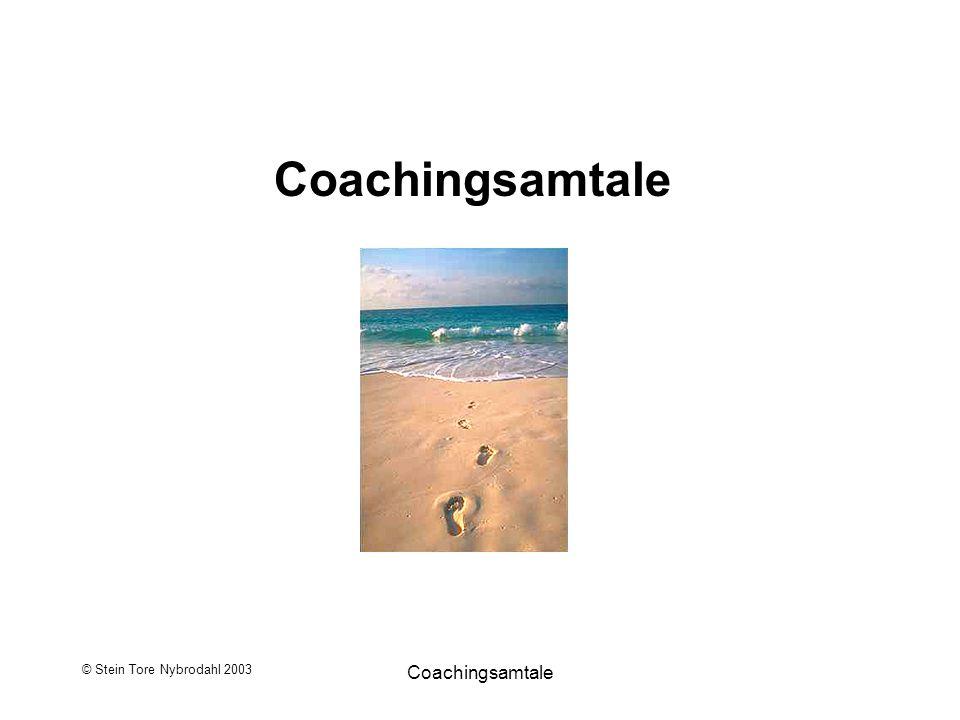 © Stein Tore Nybrodahl 2003 Coachingsamtale Intensjoner, forventninger og mål med samtalen… Intensjoner med samtalen: Forventninger til samtalen: Målet med samtalen: