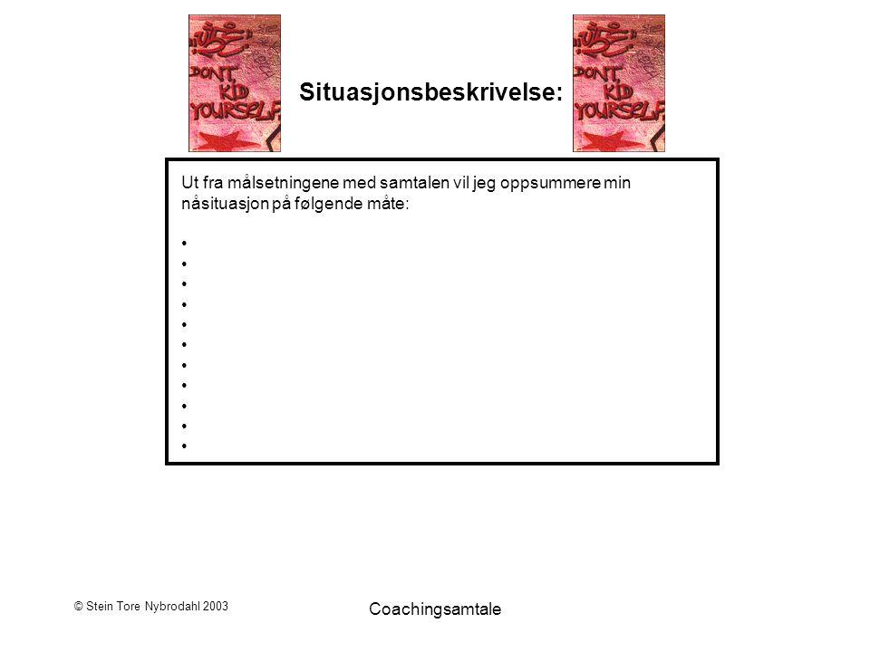 © Stein Tore Nybrodahl 2003 Coachingsamtale Situasjonsbeskrivelse: Ut fra målsetningene med samtalen vil jeg oppsummere min nåsituasjon på følgende må