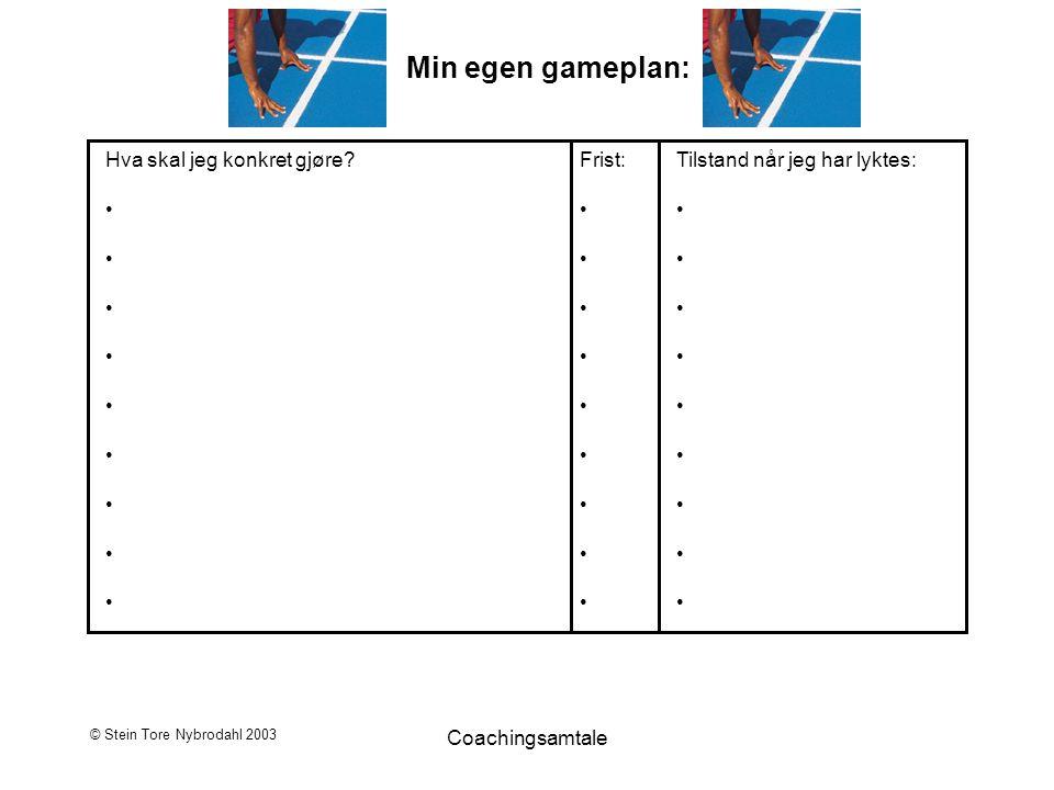 © Stein Tore Nybrodahl 2003 Coachingsamtale Min egen gameplan: Hva skal jeg konkret gjøre? Frist: Tilstand når jeg har lyktes: