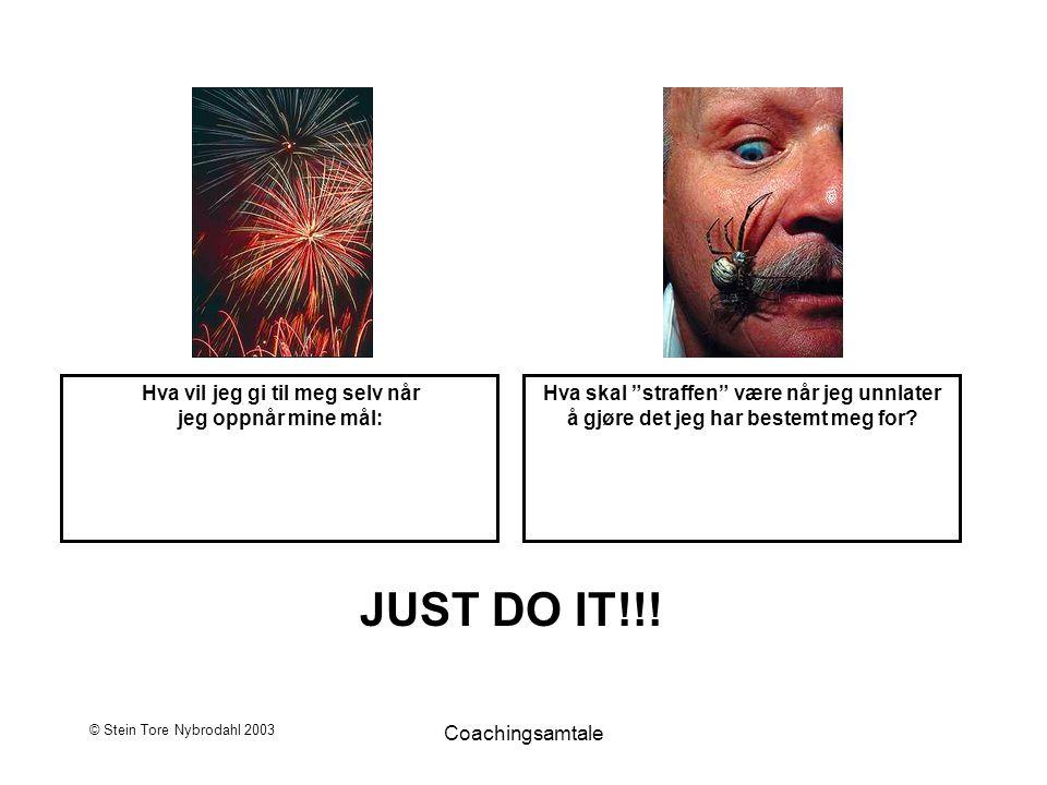 """© Stein Tore Nybrodahl 2003 Coachingsamtale JUST DO IT!!! Hva vil jeg gi til meg selv når jeg oppnår mine mål: Hva skal """"straffen"""" være når jeg unnlat"""