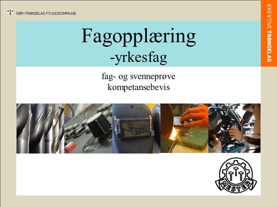 Fagopplæring -yrkesfag fag- og svenneprøve kompetansebevis