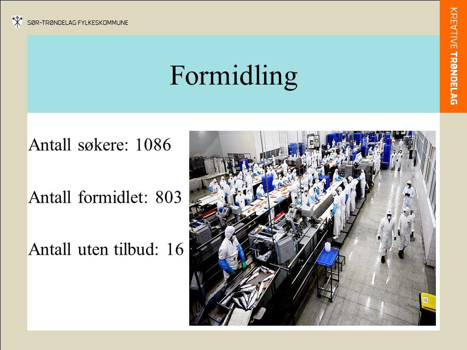 Formidling Antall søkere: 1086 Antall formidlet: 803 Antall uten tilbud: 16