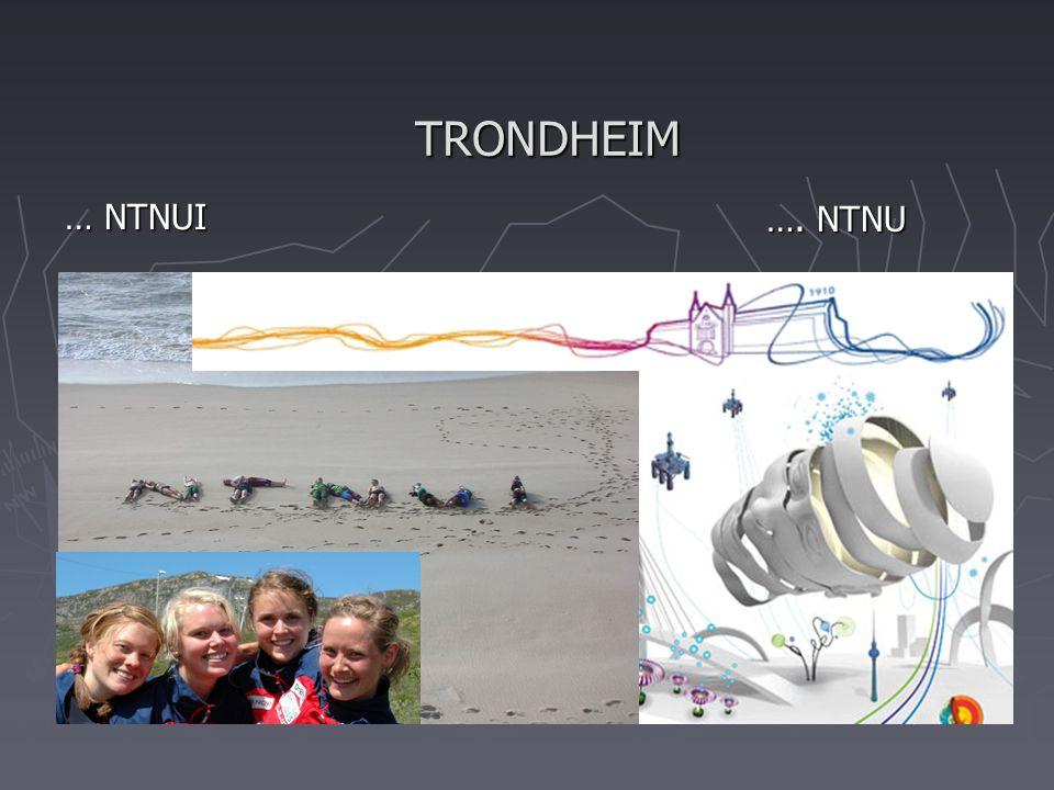 TRONDHEIM … NTNUI …. NTNU …. NTNU