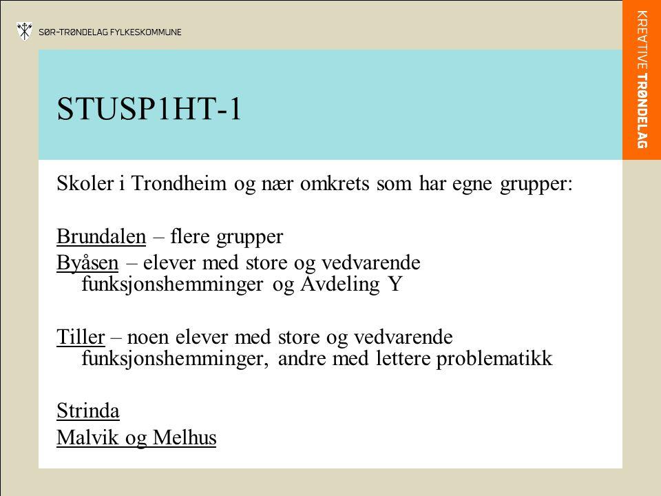 STUSP1HT-1 Skoler i Trondheim og nær omkrets som har egne grupper: Brundalen – flere grupper Byåsen – elever med store og vedvarende funksjonshemminge