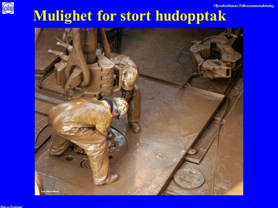 Oljearbeidernes Fellessammenslutning Halvor Erikstein, Mulighet for stort hudopptak Foto; Halvor Erikstein