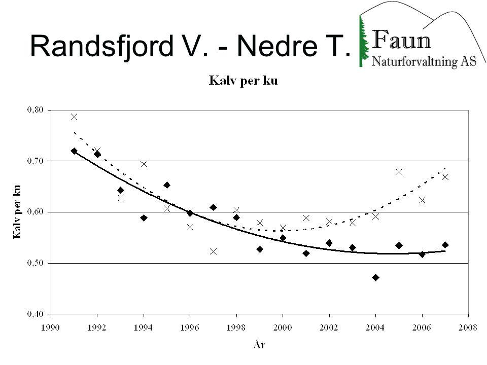 Randsfjord V. - Nedre T.