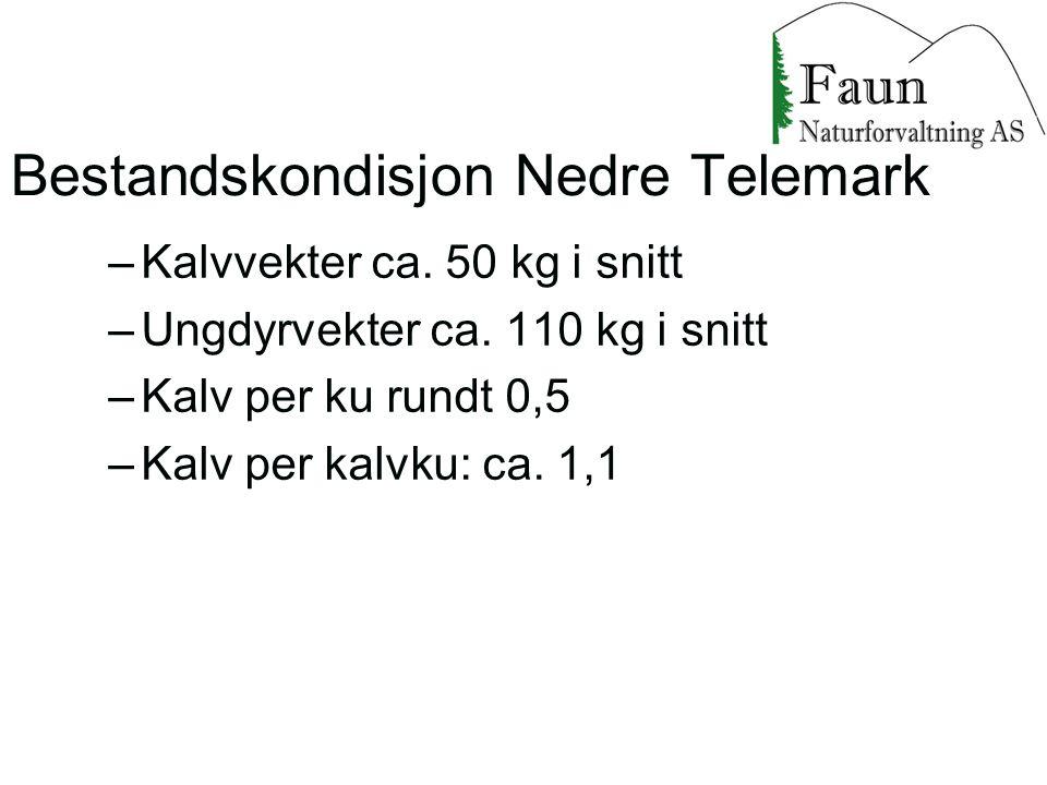 –Kalvvekter ca. 50 kg i snitt –Ungdyrvekter ca. 110 kg i snitt –Kalv per ku rundt 0,5 –Kalv per kalvku: ca. 1,1 Bestandskondisjon Nedre Telemark