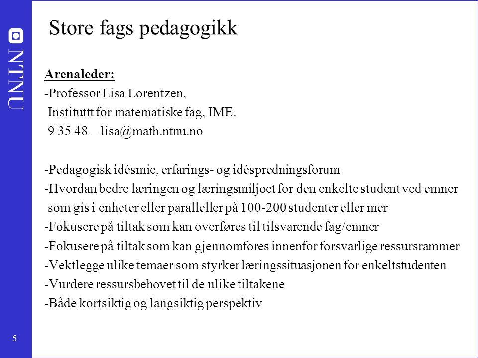 5 Store fags pedagogikk Arenaleder: -Professor Lisa Lorentzen, Instituttt for matematiske fag, IME. 9 35 48 – lisa@math.ntnu.no -Pedagogisk idésmie, e