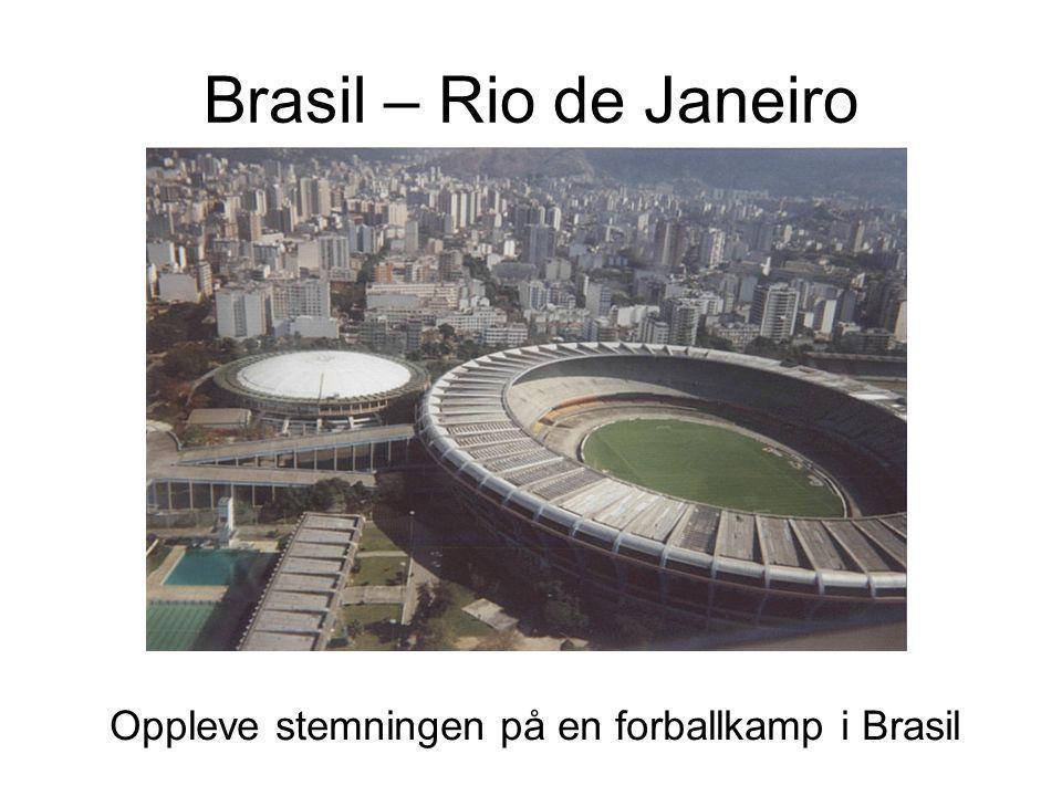 Brasil – Rio de Janeiro Oppleve stemningen på en forballkamp i Brasil