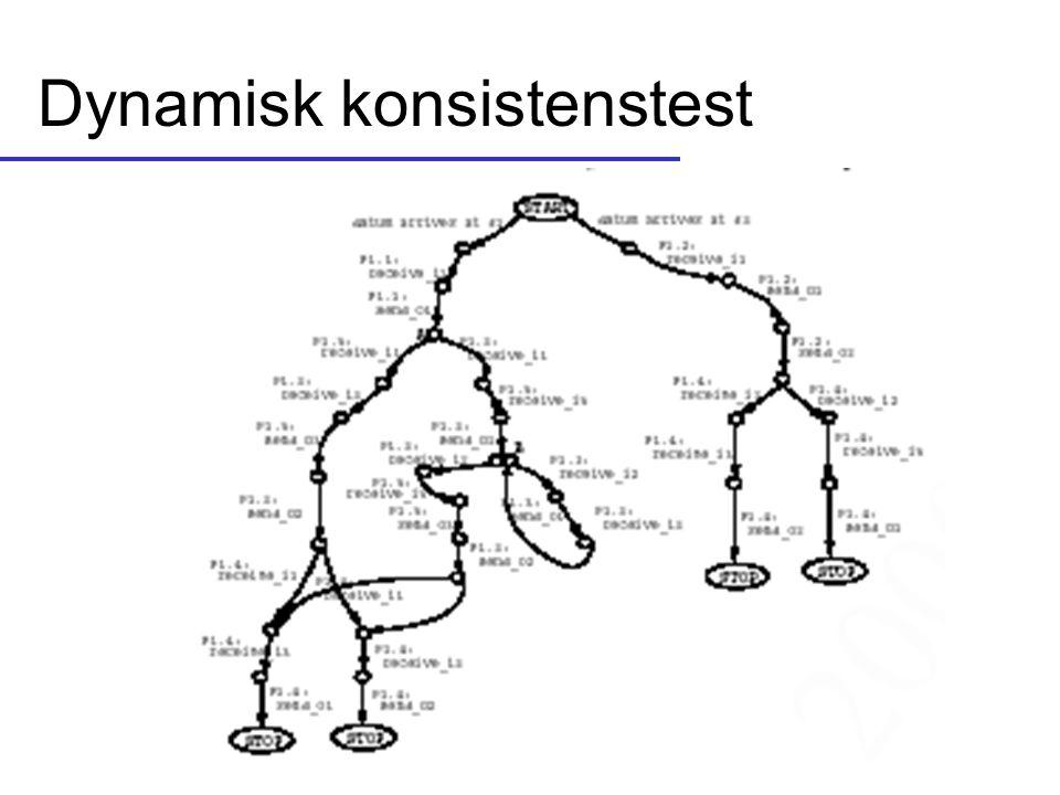 Dynamisk konsistenstest
