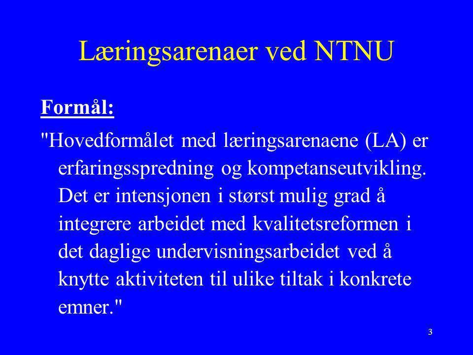 4 Læringsarenaer ved NTNU Ved NTNU er det nå i gang mange prosjekter der ulike fagmiljøer prøver ut nye lærings- og vurderingsformer.