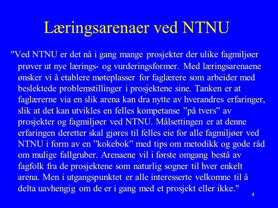 4 Læringsarenaer ved NTNU