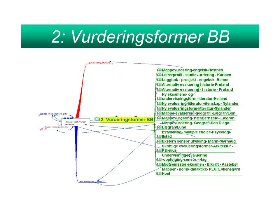 2: Vurderingsformer BB