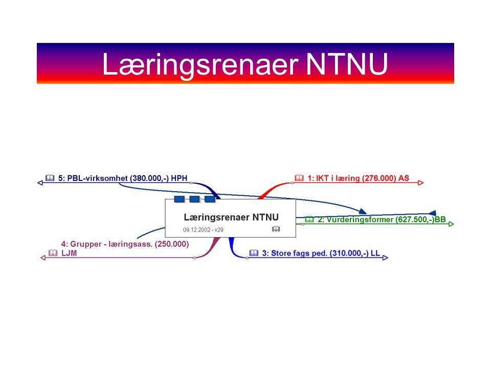 Læringsrenaer NTNU
