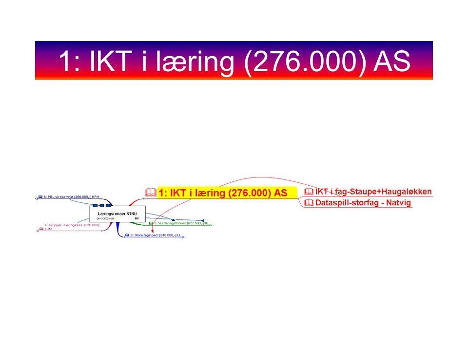 1: IKT i læring (276.000) AS