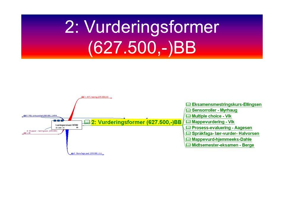 2: Vurderingsformer (627.500,-)BB