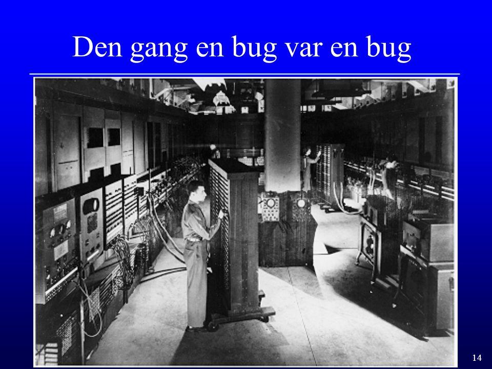 14 Den gang en bug var en bug