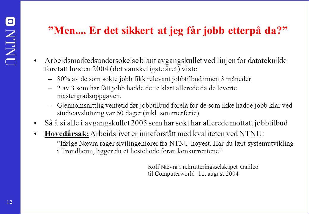 """12 """"Men.... Er det sikkert at jeg får jobb etterpå da?"""" Arbeidsmarkedsundersøkelse blant avgangskullet ved linjen for datateknikk foretatt høsten 2004"""