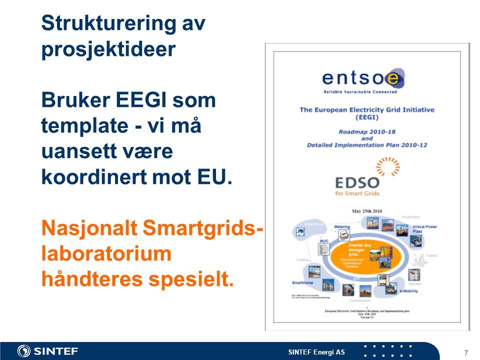SINTEF Energi AS 7 Strukturering av prosjektideer Bruker EEGI som template - vi må uansett være koordinert mot EU.