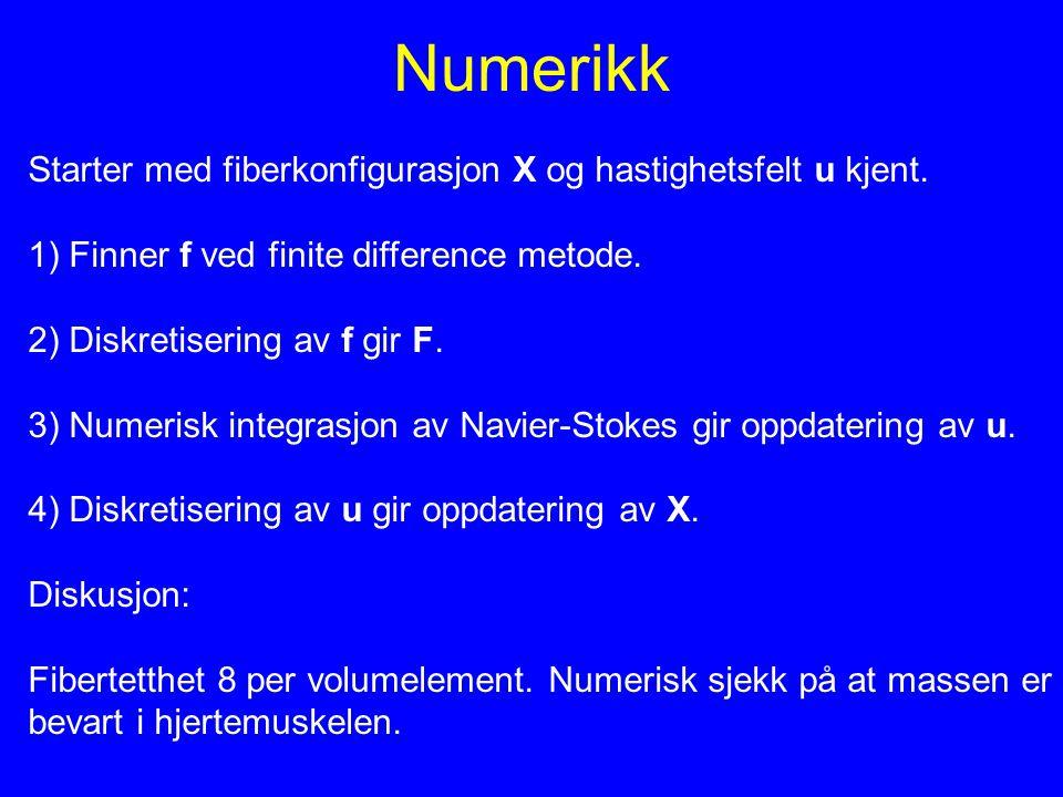 Numerikk Starter med fiberkonfigurasjon X og hastighetsfelt u kjent. 1) Finner f ved finite difference metode. 2) Diskretisering av f gir F. 3) Numeri
