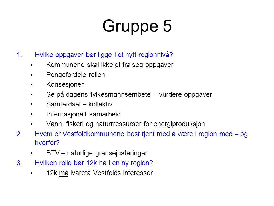 Gruppe 5 1.Hvilke oppgaver bør ligge i et nytt regionnivå.