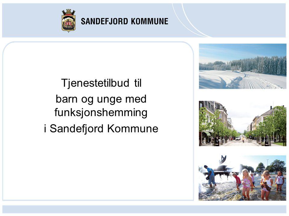 Tjenestetilbud til barn og unge med funksjonshemming i Sandefjord Kommune