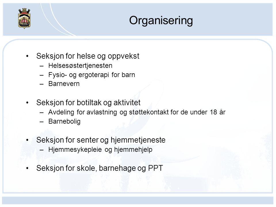 Organisering Seksjon for helse og oppvekst –Helsesøstertjenesten –Fysio- og ergoterapi for barn –Barnevern Seksjon for botiltak og aktivitet –Avdeling