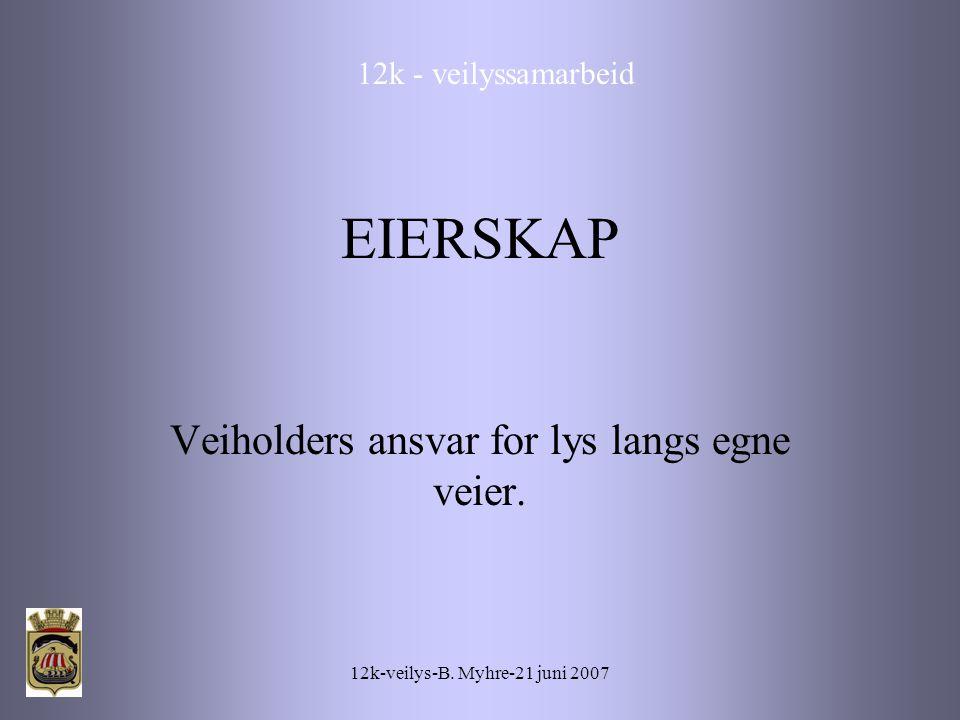 12k-veilys-B. Myhre-21 juni 2007 EIERSKAP Veiholders ansvar for lys langs egne veier.
