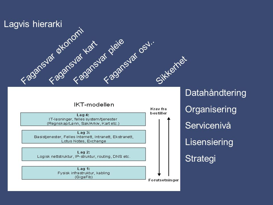Lagvis hierarki Fagansvar økonomi Datahåndtering Organisering Servicenivå Lisensiering Strategi Sikkerhet Fagansvar kart Fagansvar pleie Fagansvar osv