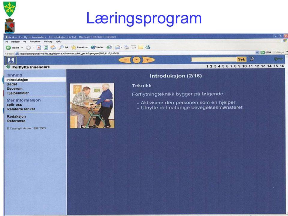 Læringsprogram