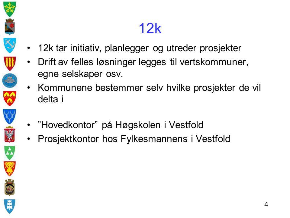 12k særpreg  frivillighet  fleksibilitet  lokal beslutning  likeverd 5