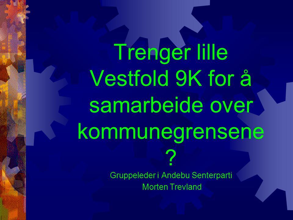Trenger lille Vestfold 9K for å samarbeide over kommunegrensene ? Gruppeleder i Andebu Senterparti Morten Trevland