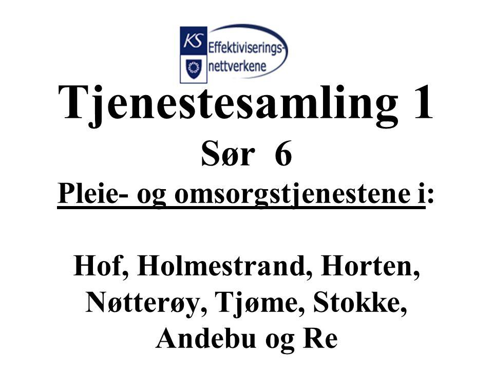 Tjenestesamling 1 Sør 6 Pleie- og omsorgstjenestene i: Hof, Holmestrand, Horten, Nøtterøy, Tjøme, Stokke, Andebu og Re