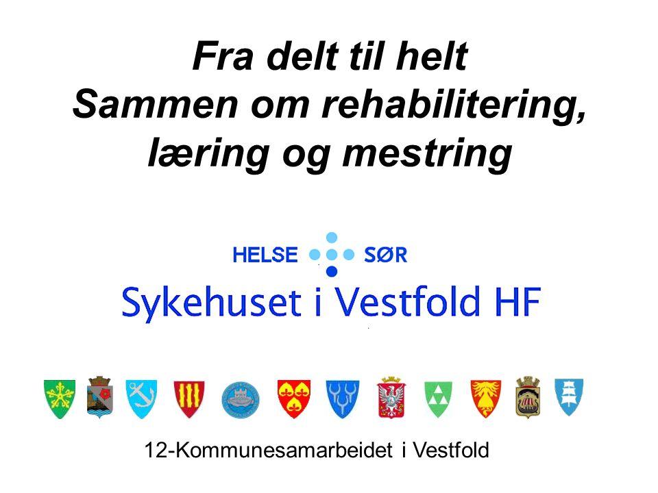 Fra delt til helt Sammen om rehabilitering, læring og mestring 12-Kommunesamarbeidet i Vestfold