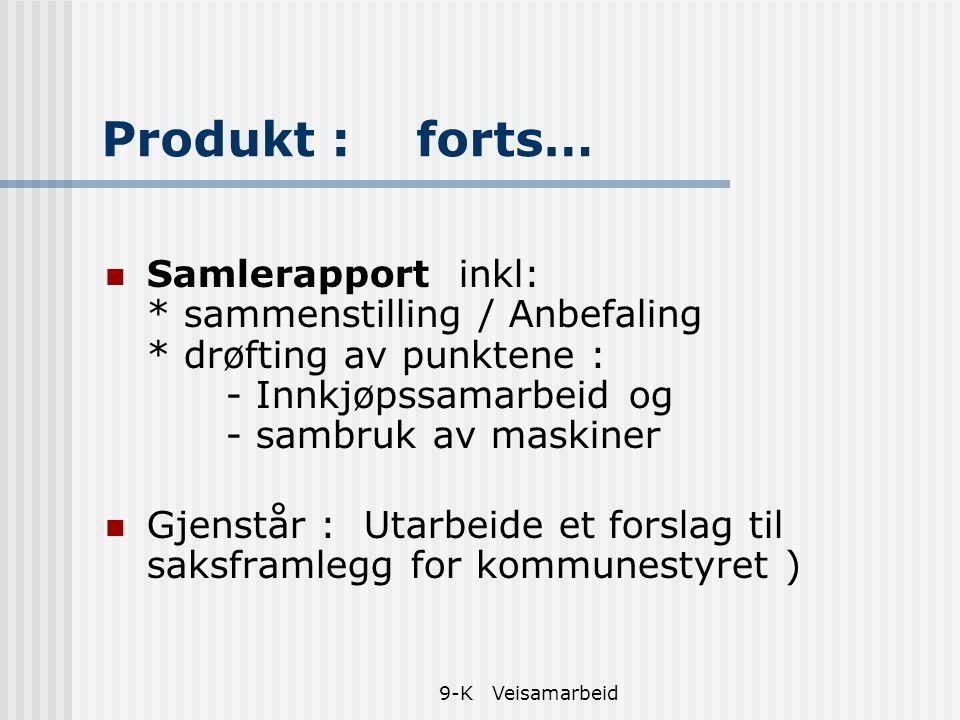 9-K Veisamarbeid Produkt : forts… Samlerapport inkl: * sammenstilling / Anbefaling * drøfting av punktene : - Innkjøpssamarbeid og - sambruk av maskin